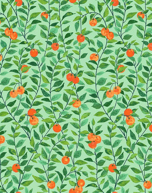 Orange Crush Green  Wallpaper