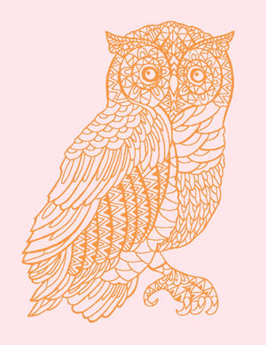 Otus the Owl Wallpaper - Pink - Wallshoppe