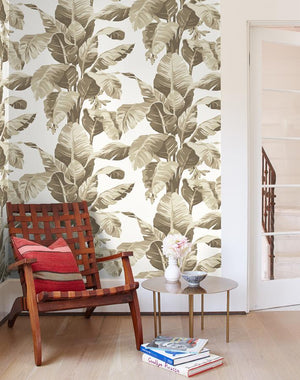 Pacifico Palm Wallpaper - Cappuccino - Wallshoppe