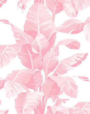 Pacifico Palm Garcelle Pink Wallpaper