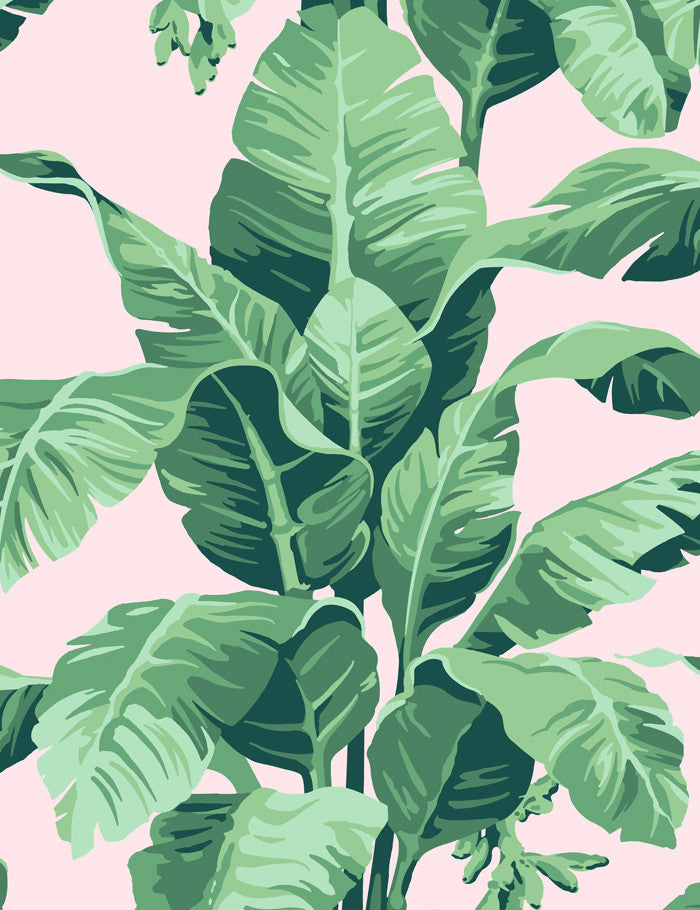 Tropical Palm Wallpaper Green Leaves On Pink By Nathan Turner