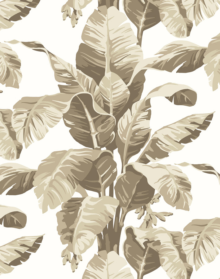 Pacifico Palm Wallpaper - Cappucino