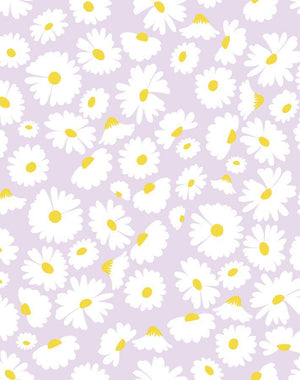 Pop Daisy Lavender  Wallpaper