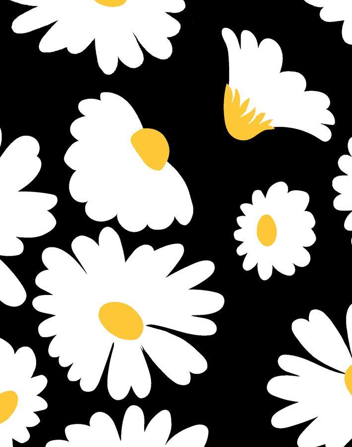 Pop Daisy Onyx  Wallpaper