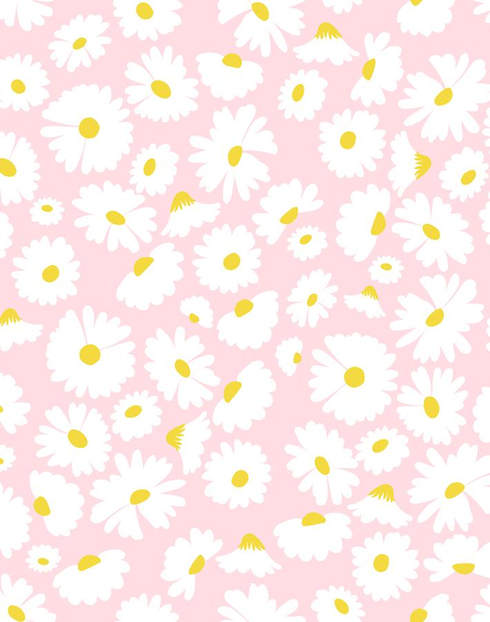 Pop Daisy Pink  Wallpaper