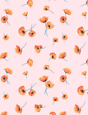 Poppy Blush  Wallpaper