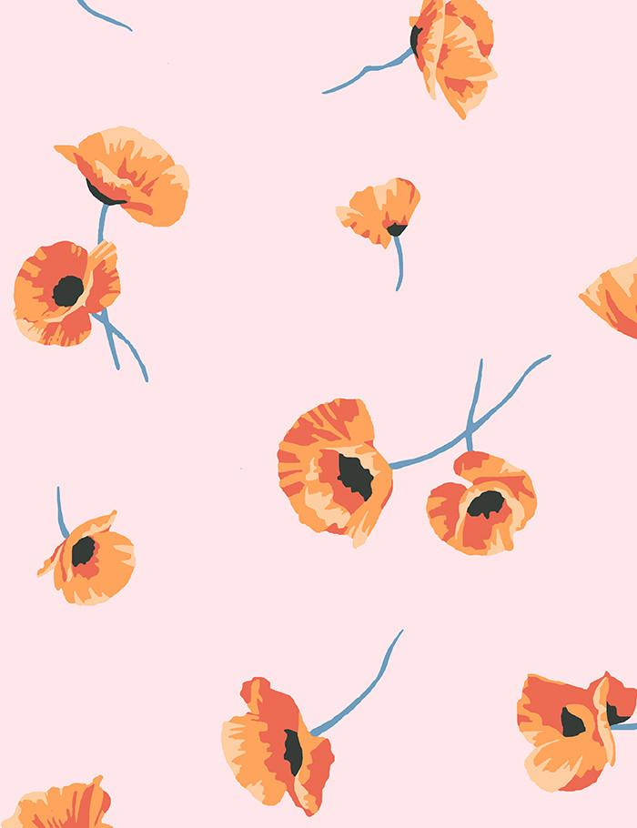 Poppy Wallpaper - Blush