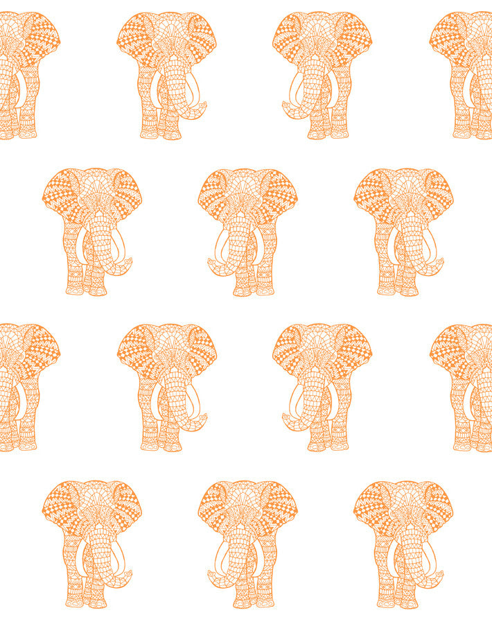 Raja The Elephant Pushpop  Wallpaper
