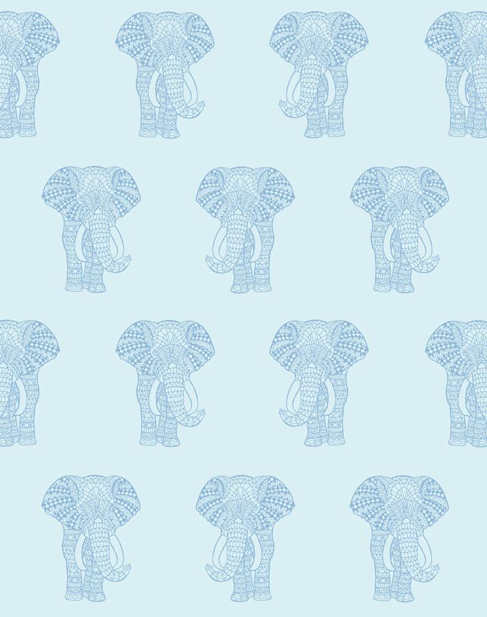 Raja The Elephant Sky  Wallpaper