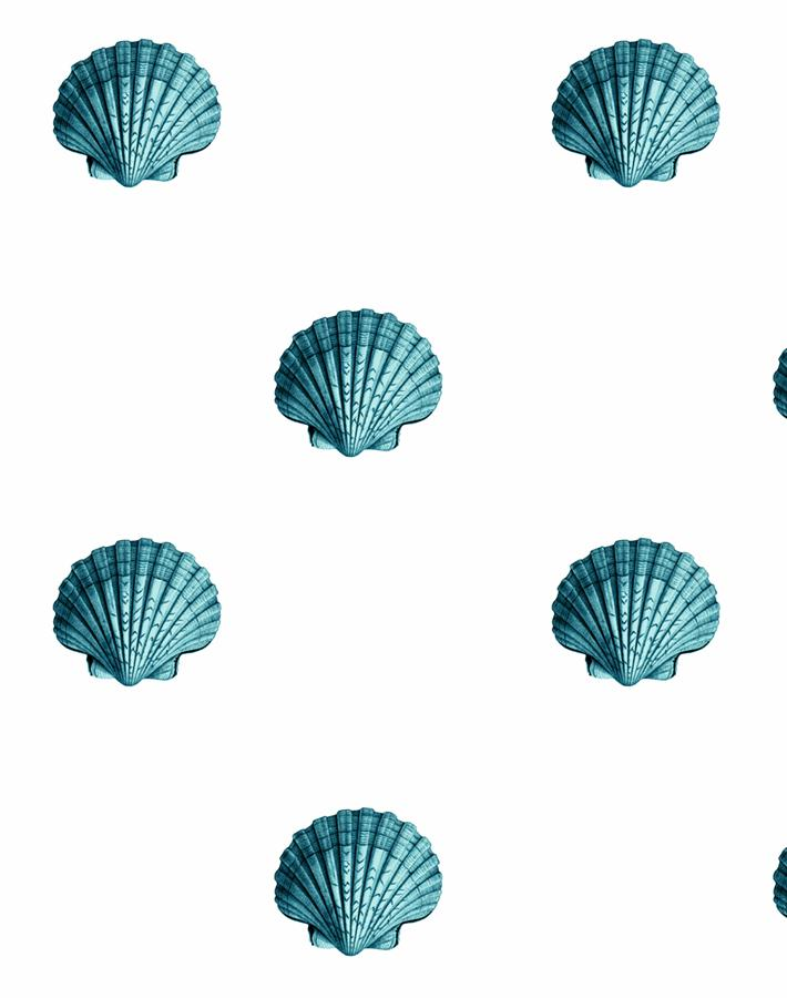 Seashell Teal  Wallpaper