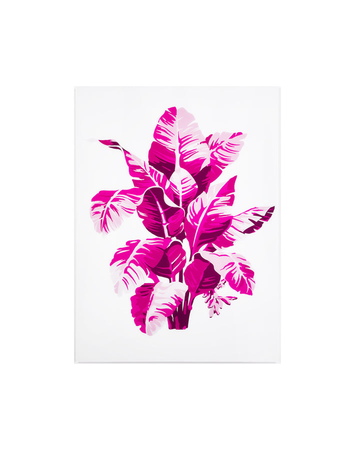 Shades of Pink Palm Small on Acrylic