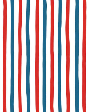 Stripes Red Blue  Wallpaper