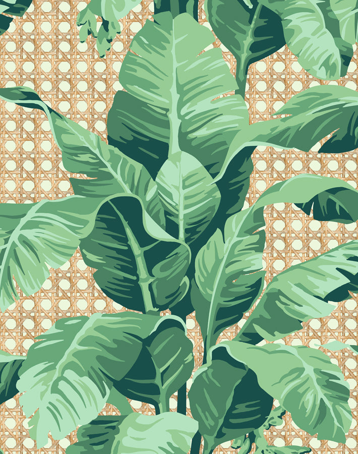 Sunnylands Palm Pistachio  Wallpaper