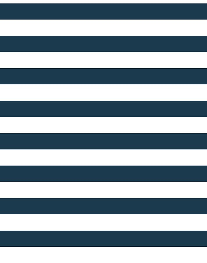 Cabana Stripe Wallpaper - Navy - Wallshoppe
