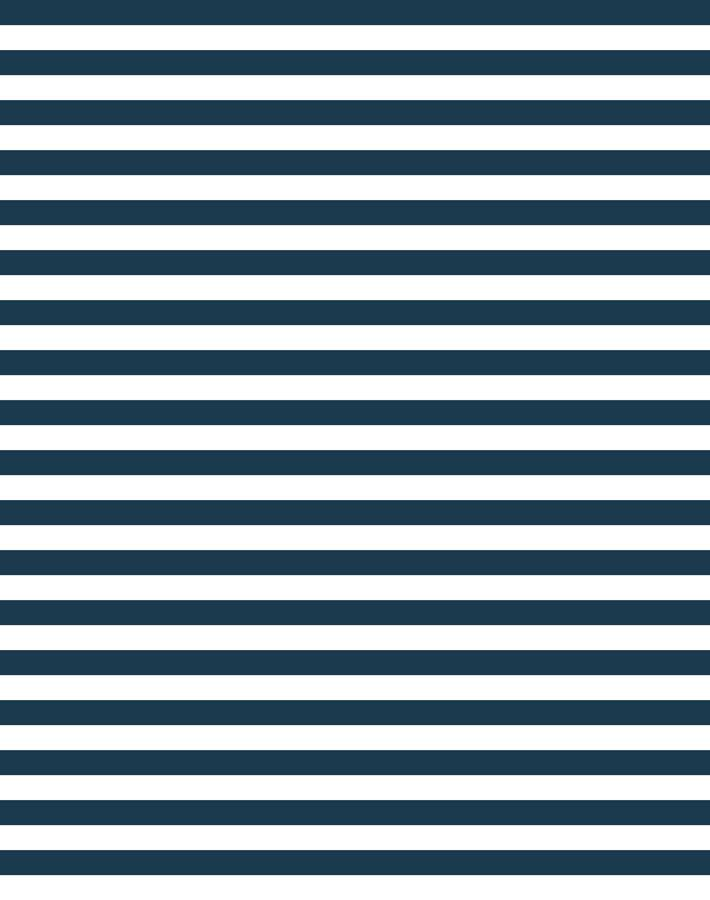 Cabana Stripe Navy  Wallpaper