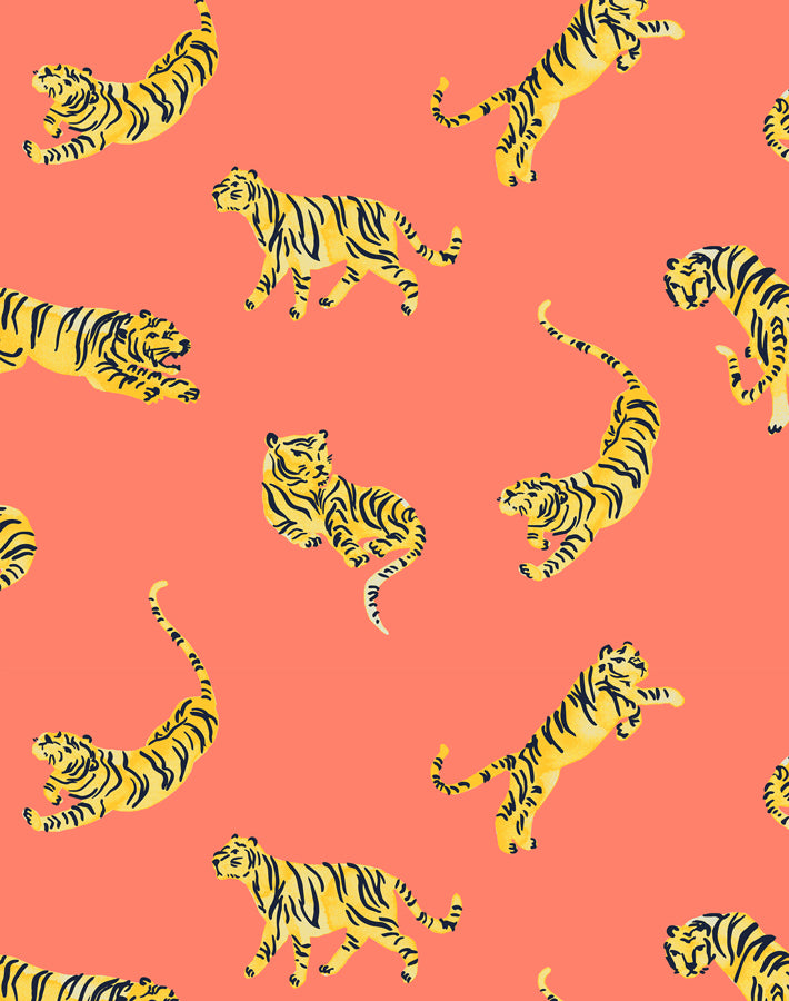 Tigers Watermelon  Wallpaper