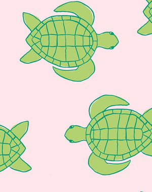 Trailing Turtles Piggybank