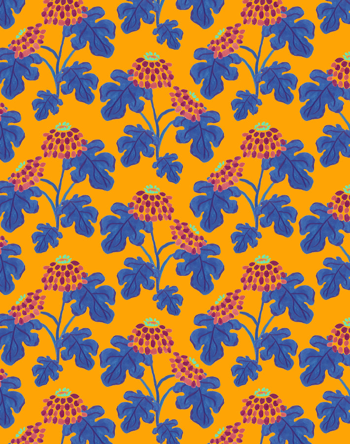 Casia Flowers Marigold  Wallpaper