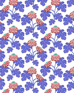Casia Flowers Purple  Wallpaper
