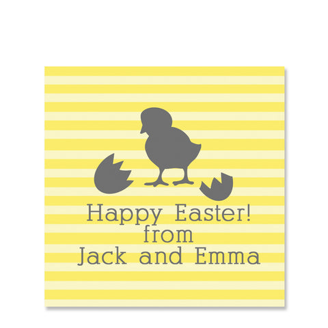 Hatched Chick Gift Sticker | Swanky Press | Square