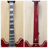 Haze SEG-272 Semi-Hollow body electric guitar,CherryRed+Free Bag,Strap,Strings