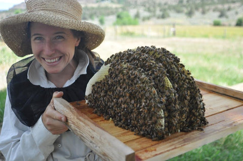 Liz the bee lady