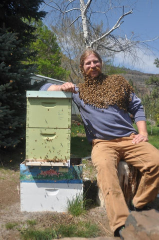 Matt the bee man