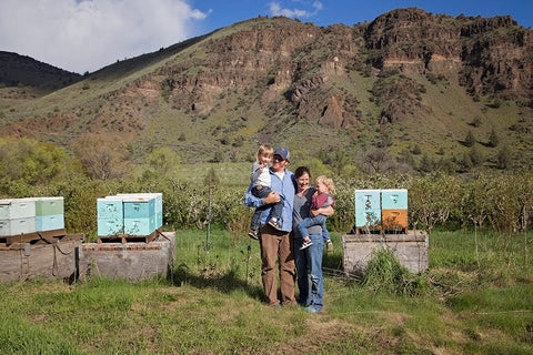 Apricot Apiaries - family beekeeping business