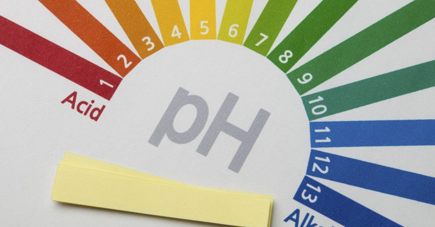 The Importance of Alkalinity and Maintaining a Healthy pH