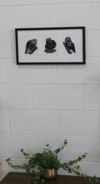 Native Birds Prints Dark Frame