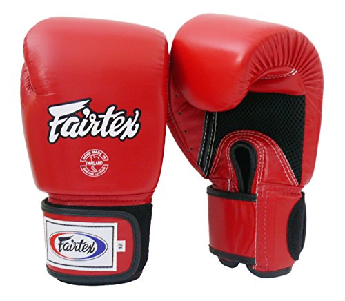 Fairtex BGV1-B Breatheable Palm Muay Thai Gloves.