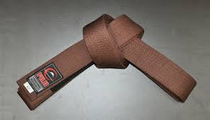 Fuji Adult BJJ Belt - Bridge City Fight Shop - 4