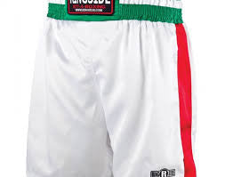 Ringside Pro‑Style Boxing Trunks - Bridge City Fight Shop - 6