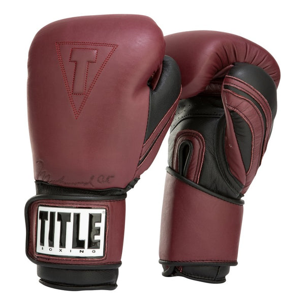 Title Ali Authentic Leather Training Gloves