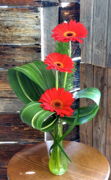 I'll Make You Smile! - Gerbera Daisies
