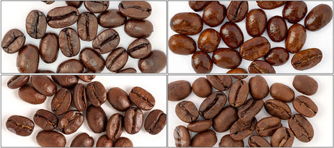 House Favorites Sample Pack (Italian Roast Espresso, Jamaican Me Crazy, 0 Dark 30, Medium House Blend) - Coffee Canopy