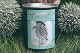 Chalk Paint, Wise Owl Chalk Synthesis Paint, Limestone 16oz