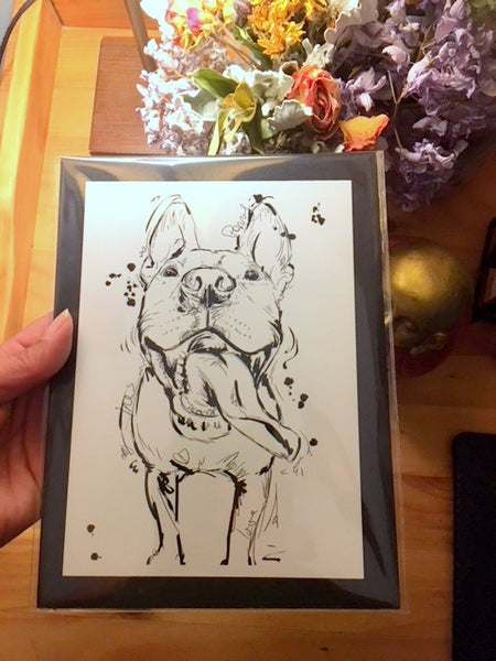 Custom Pet Sketch