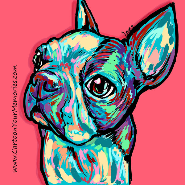 Colorful Boston Terrier