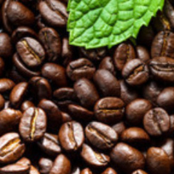 Almond Amaretto Coffee- 1lb (16oz) - T.M. Ward Coffee Company
