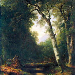 100% Hand Painted Oil on Canvas - A creek in the woods by Asher Brown Durand