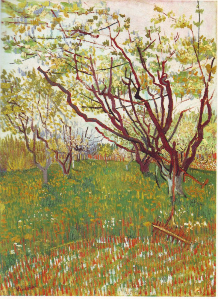 The Museum Outlet - Cherry Tree by Van Gogh