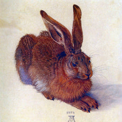 The Museum Outlet - Field hare by Durer