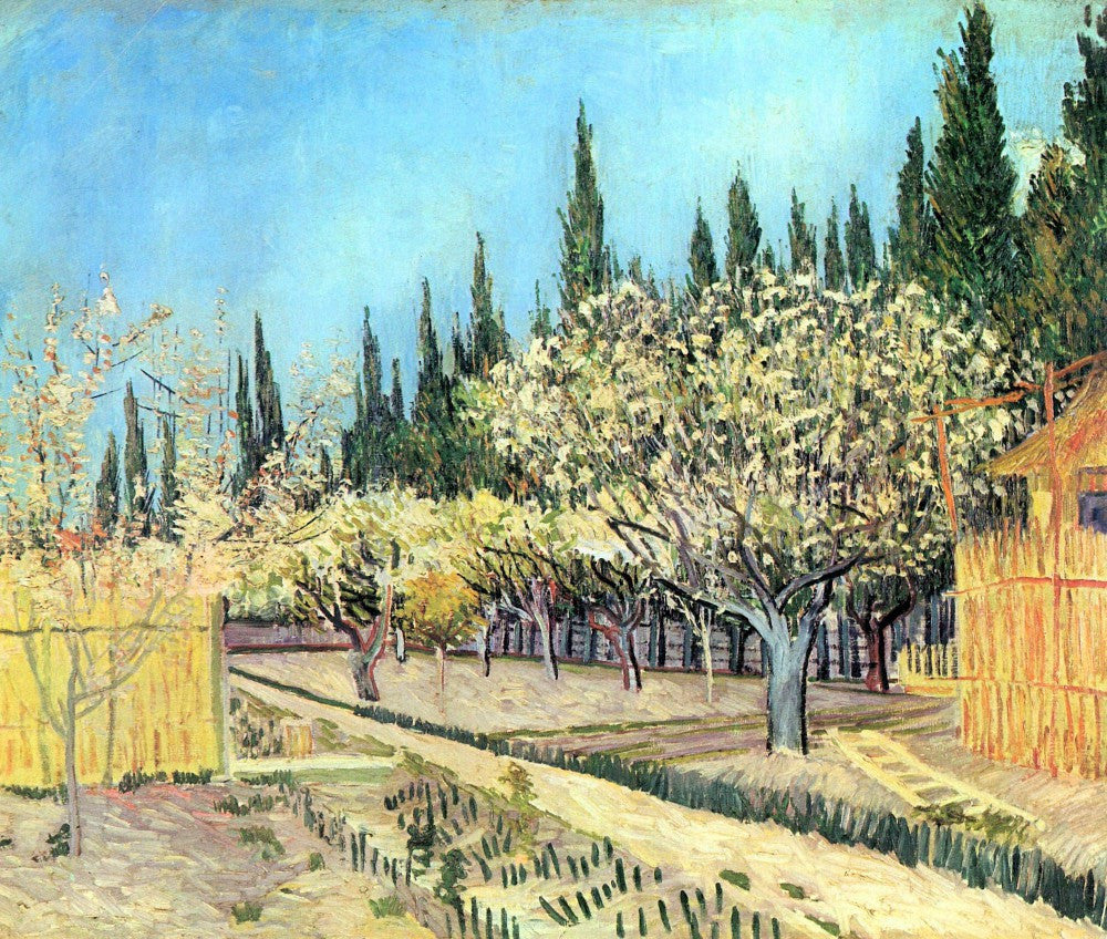 The Museum Outlet - Flowering fruit garden, surrounded by cypress by Van Gogh