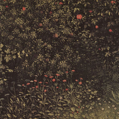 The Museum Outlet - Flowering shrubs and plants by Jan Van Eyck