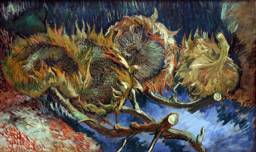 100% Hand Painted Oil on Canvas - Four Sunflowes gone to Seed by Van Gogh