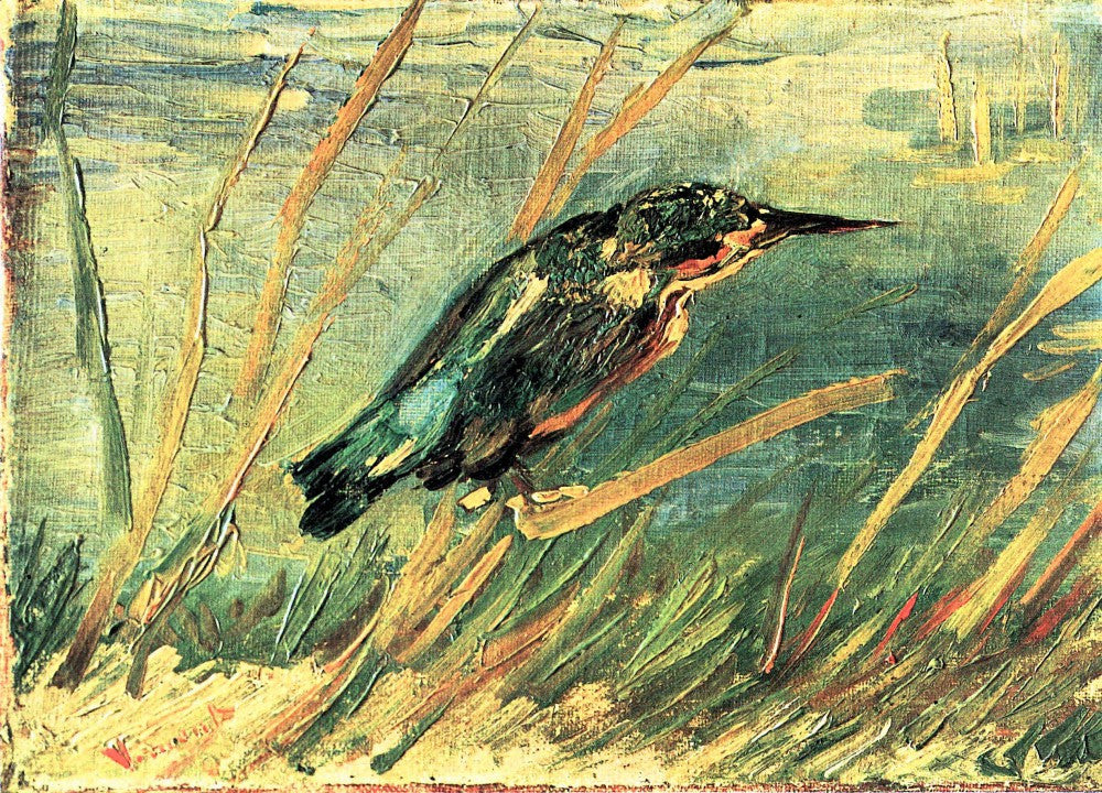 The Museum Outlet - Kingfisher by Van Gogh