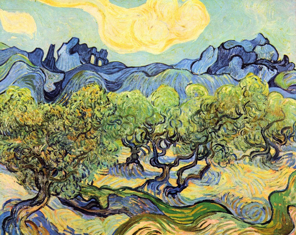 The Museum Outlet - Landscape with olive Trees by Van Gogh
