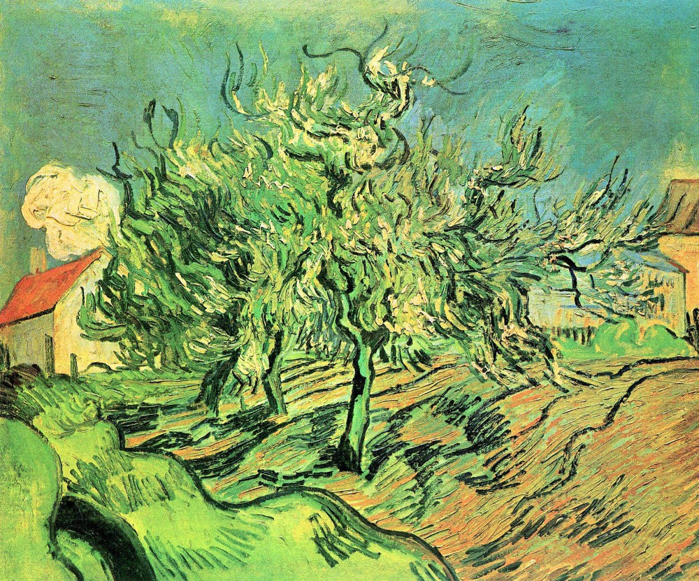 The Museum Outlet - Landscape with three trees and houses by Van Gogh