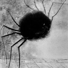 The Museum Outlet - Laughing spider by Odilon Redon